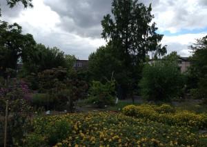 Überblick über den Botanischen Garten